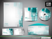 Professional corporate identity kit or business kit. — Cтоковый вектор