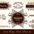 ストックベクタ: Vector set of calligraphic design ornate frame and page decorati