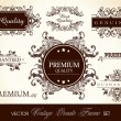 Vector set of calligraphic design ornate frame and page decorati — Vector de stock #10564868