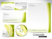 Kit professionale identità aziendale o business kit. — Vettoriale Stock