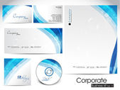 Professional corporate identity kit or business kit. — Stock Vector