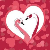 Two graceful swans close up in love. Vector illustration. — Stock Vector