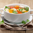 Chicken soup with vegetables — Stockfoto #9238445