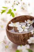 Flores brancas na taça para spa — Fotografia Stock