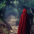Stock Photo: Person wearing red cloak in forest