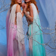 Elves in magical forest -  