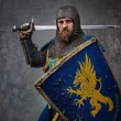 Medieval knight — Stock Photo #10204876
