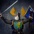 Medieval knight on grey background. — Stock Photo