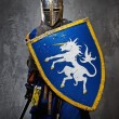 Medieval knight on grey background. — Stock Photo #10204880