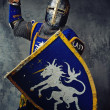 Medieval knight — Stock Photo #10204881