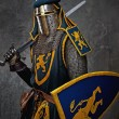 Medieval knight — Stock Photo #10204895