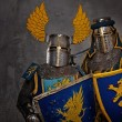 Medieval knight — Stock Photo #10204897