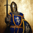 Medieval knight - Zdjcie stockowe