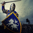 Medieval knight — Stock Photo #10204911