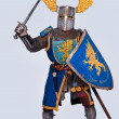 Medieval knight — Stock Photo #10204915