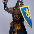 Medieval knight — Stock Photo #10204934