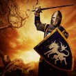 Medieval knight — Stock Photo #10204986