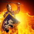 Medieval knight — Stock Photo #10204988