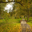 Stock Photo: Road in a autumn park.