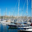 Yachts & boats in a harbour. - Photo