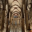 Inside the Cathedral of Santa Eulalia in Barcelona — Stock Photo