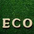 The word eco written on green background - Stock Photo