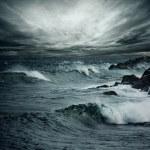 океанский шторм — Стоковое фото #10214431