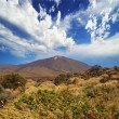 Mount Teide, Tenerife. - Stock Photo