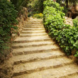 Stock Photo: Path in a garden