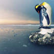 Royalty-Free Stock Photo: Penguin
