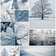 collage di inverno — Foto Stock