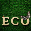 The word eco — Stock Photo