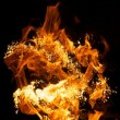Fire flames — Stock Photo #10215336