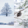winter collage — Stockfoto