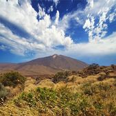 Teide, tenerife. — Photo
