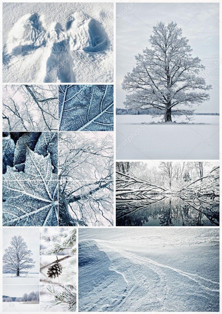 冬季拼贴画 - 图库图片