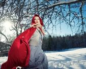 Capot rouge — Photo