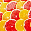 Background from the oranges and grapefruits — Stock Photo