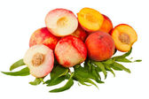Nectarine and peach fruits — Stock Photo