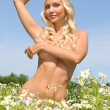 Beautiful naked woman on the meadow — Stock Photo #9584832