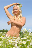 Beautiful naked woman on the meadow — Stock Photo