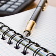 Opened notebook with pen — Stock Photo #10100610