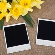 Photo frame with yellow daffodils — Stock Photo