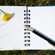Stock Photo: Notepad and pen
