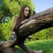 Beautiful girl lying on a tree — Stock Photo