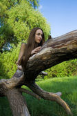 Beautiful girl lying on a tree — Stock Photo