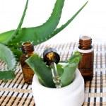 Aloe vera essential oil — Stock Photo