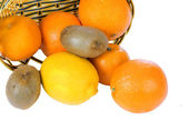 Shopping with citrus fruits — Stock Photo