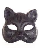 Kedi maskesi — Stok fotoğraf