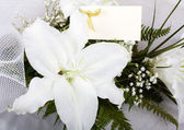 Beautiful Lily and the greeting card — Stockfoto